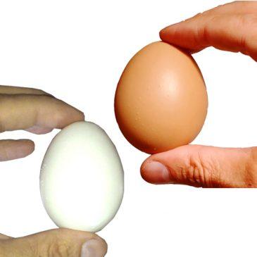 Fake Egg